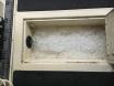 Fish box 48 hours