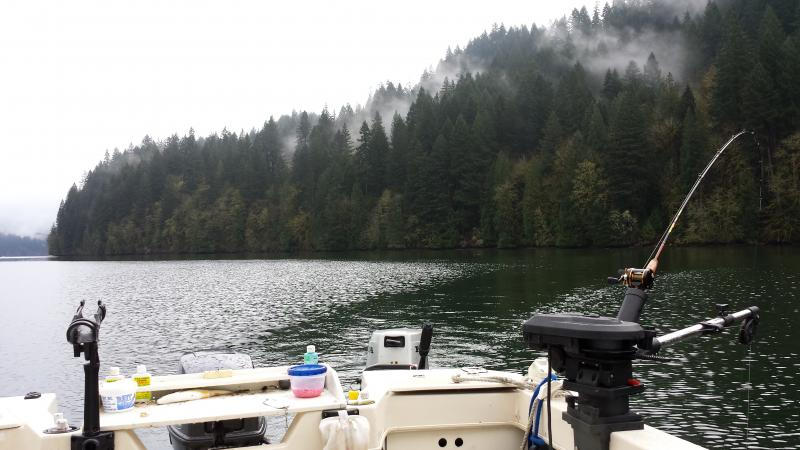Lake merwin kokanee fishing for Lake merwin fishing