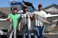Columbia River Fall Chinook Limit 8-31-13