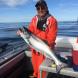 Alaska King 2