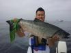 Salmon 2015